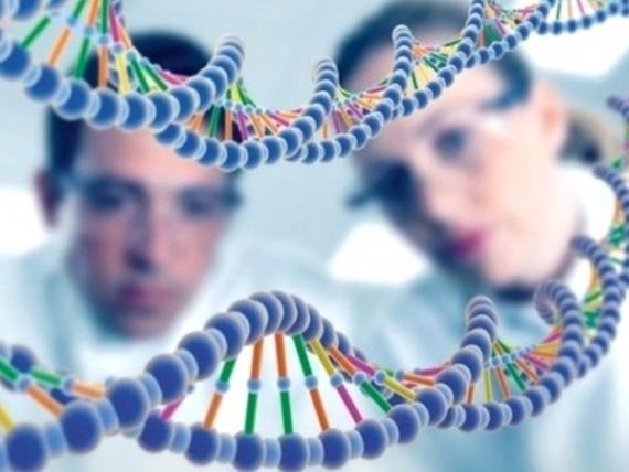 анализ ДНК на отцовство