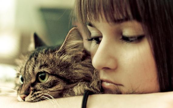 Животные и психология человека. Покупаем своему пушистику корм, зоотовары и другое
